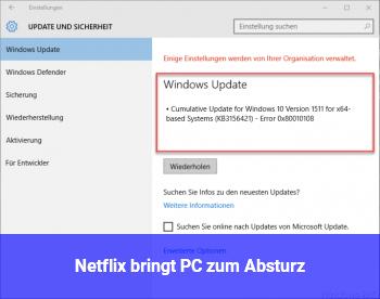 Netflix bringt PC zum Absturz
