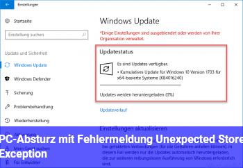 """PC-Absturz mit Fehlermeldung """"Unexpected Store Exception"""""""