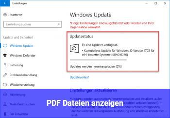 PDF Dateien anzeigen