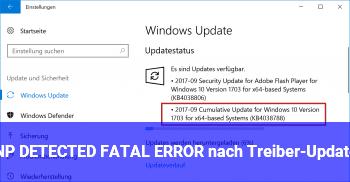 PNP_DETECTED_FATAL_ERROR nach Treiber-Updates