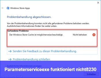 Parameterservice.exe funktioniert nicht…