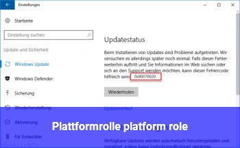 Plattformrolle (platform role)