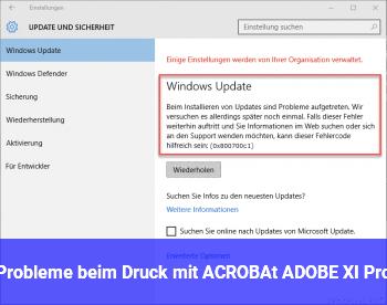 Probleme beim Druck mit ACROBAt ADOBE XI Pro