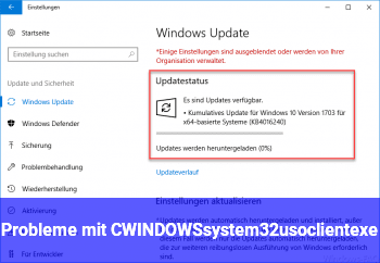 Probleme mit C:\WINDOWS\system32\usoclient.exe