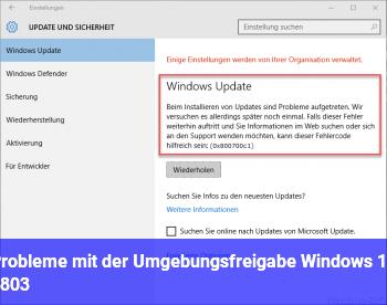Probleme mit der Umgebungsfreigabe (Windows 10 1803)
