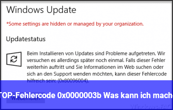 STOP-Fehlercode: 0x0000003b Was kann ich machen?