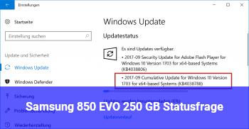 Samsung 850 EVO 250 GB Statusfrage