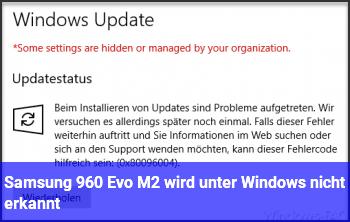 Samsung 960 Evo M2 wird unter Windows nicht erkannt