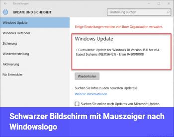 Schwarzer Bildschirm mit Mauszeiger nach Windowslogo