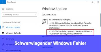 Schwerwiegender Windows Fehler