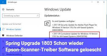 Spring Upgrade 1803: Schon wieder Epson-Scanner-Treiber & Software gelöscht!