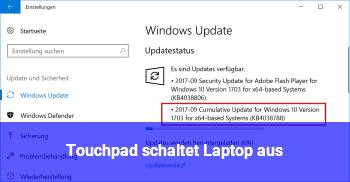 Touchpad schaltet Laptop aus