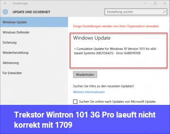 Trekstor Wintron 10.1 3G Pro läuft nicht korrekt mit 1709
