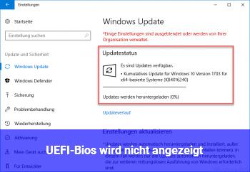 UEFI-Bios wird nicht angezeigt.