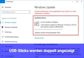 USB-Sticks werden doppelt angezeigt