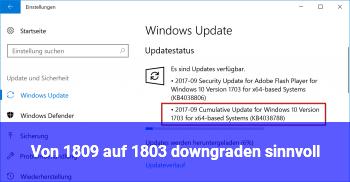 Von 1809 auf 1803 downgraden sinnvoll?