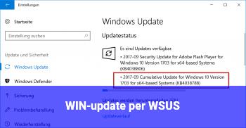 WIN-update per WSUS