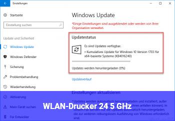 WLAN-Drucker 2,4 / 5 GHz