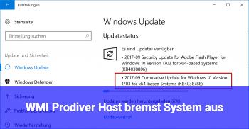 WMI Prodiver Host bremst System aus