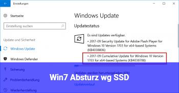 Win7 Absturz. wg. SSD?