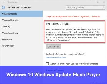Windows 10, Windows Update-Flash Player