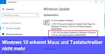 Windows 10 erkennt Maus und Tastaturtreiber nicht mehr