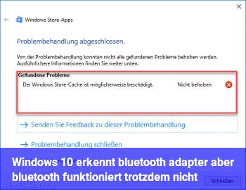 Windows 10 erkennt bluetooth adapter aber bluetooth funktioniert trotzdem nicht