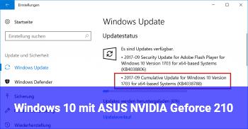 Windows 10 mit ASUS NVIDIA Geforce 210