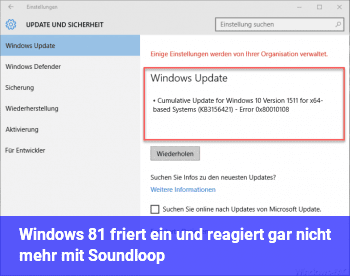 Windows 8.1 friert ein und reagiert gar nicht mehr mit Soundloop