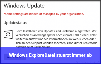 Windows Explore/Datei stürzt immer ab
