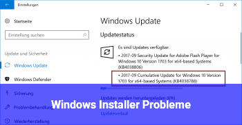 Windows Installer Probleme