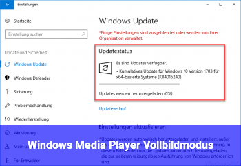 Windows Media Player Vollbildmodus