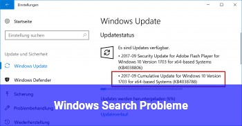Windows Search Probleme