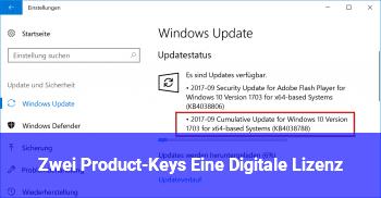 Zwei Product-Keys! / Eine Digitale Lizenz?