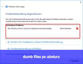 dumb files / pc absturz