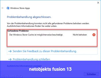 netobjekts fusion 13