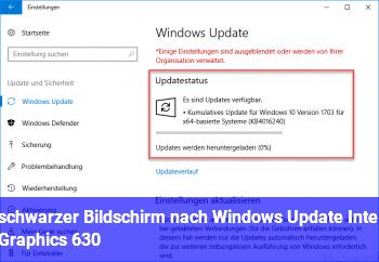 schwarzer Bildschirm nach Windows Update Intel Graphics 630