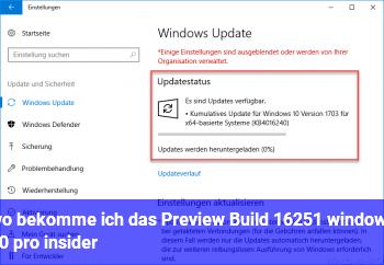 wo bekomme ich das Preview Build 16251 windows 10 pro insider